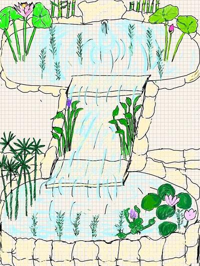 Giardino acquatico giardinaggio per tutti for Vasca per stagno