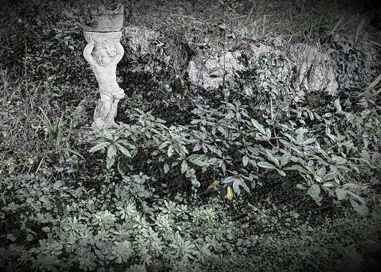 Sassi giardino roccioso decorare il giardino con i sassi - Giardino roccioso foto ...